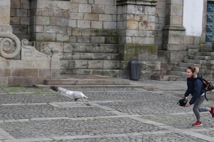 20171214_Porto (36)
