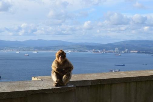 20180106_Gibraltar (84)_à publier