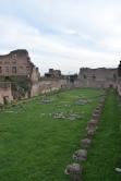 stade du forum